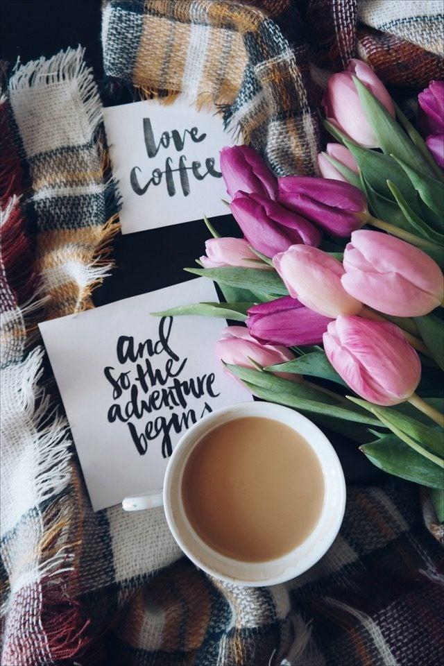 caffè fiori love coffee edreams blog di viaggi