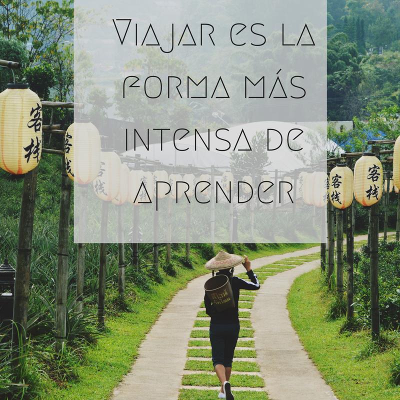 """""""Viajar es la forma más intensa de aprender"""" Frases sobre viajar"""