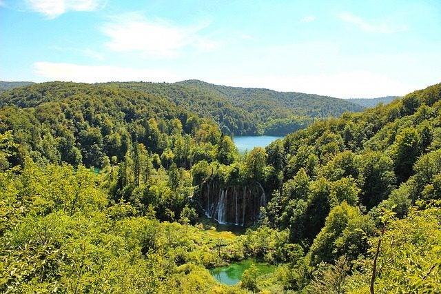 Los bosques más bellos del mundo. Croacia