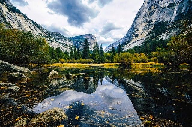 Los bosques más bellos del mundo. Yosemite