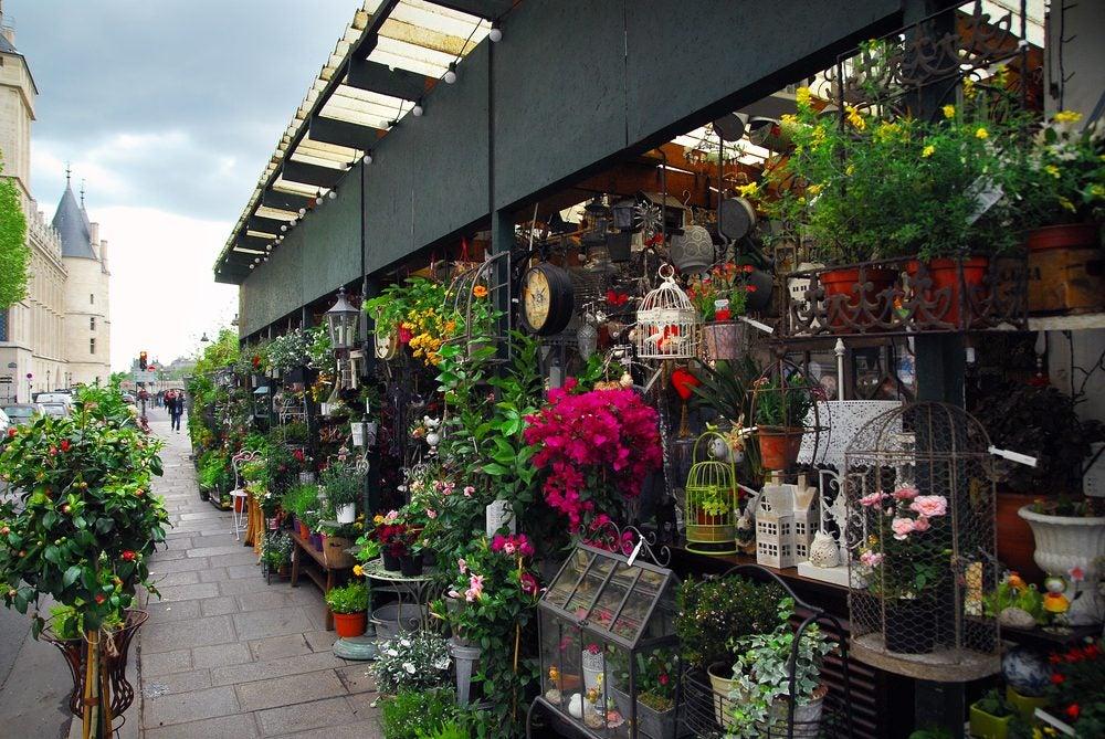 El mercado de las flores Louis-Lépine, París