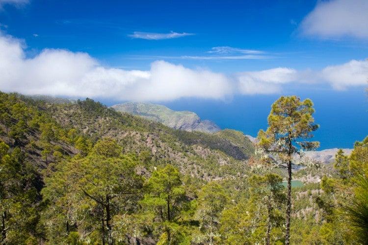 Parque Natural de Tamadaba en la isla de Gran Canaria
