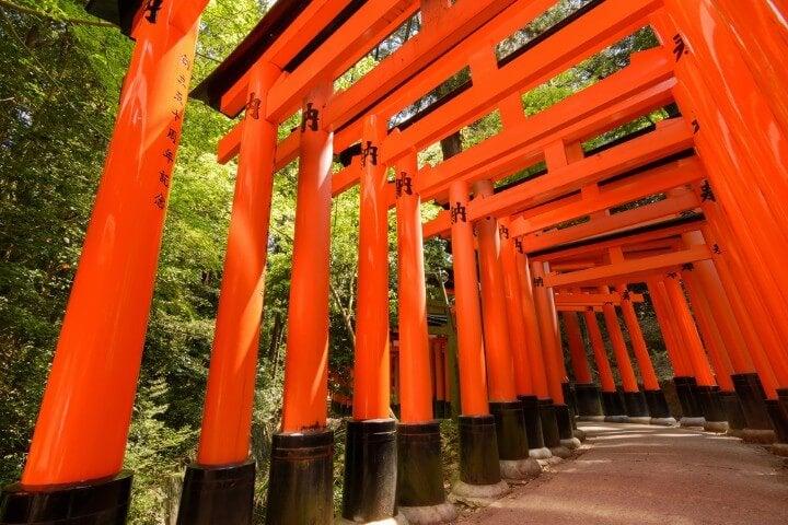 Camino de torii naranjas en el Santuario Fushimi Inari cerca de Kioto