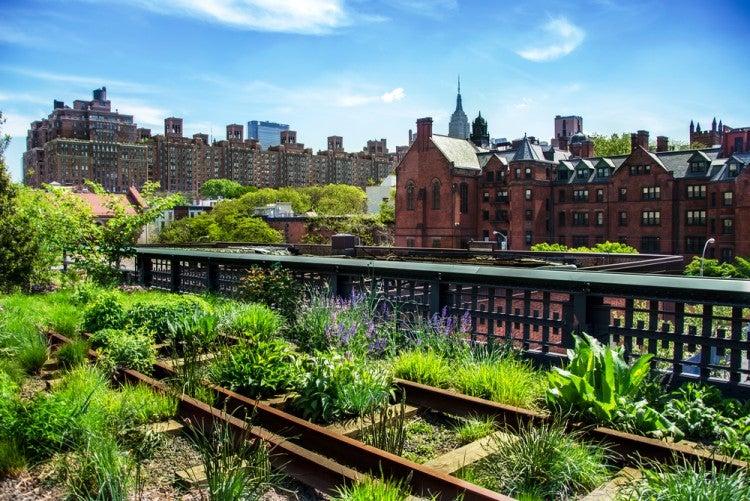 High Line Park en el barrio de Chelsea, Nueva York