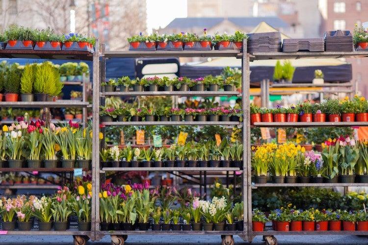 Market en Nueva York