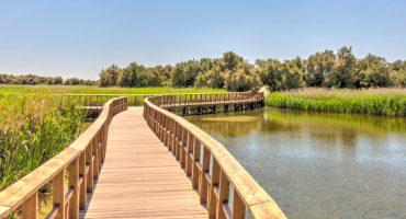 ¿Qué ver en Castilla-La Mancha durante tus vacaciones?