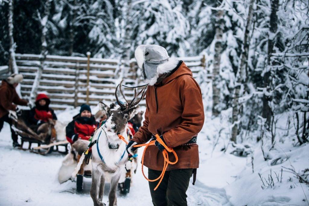 Trineo tradicional tirado por renos en la Laponia finlandesa