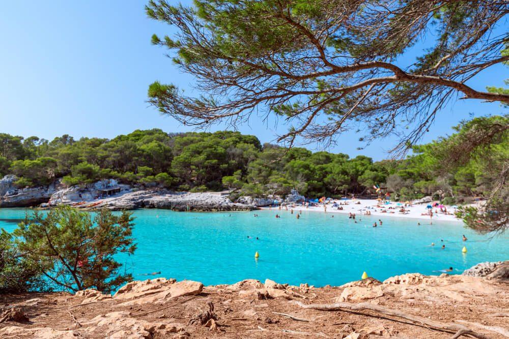 Pinos y roca caliza en Cala Turqueta, Menorca