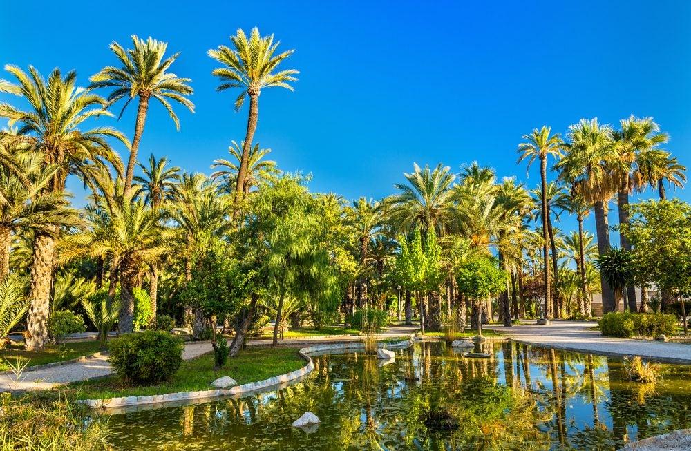Palmeras y lago en El Palmeral de Elche, Alicante