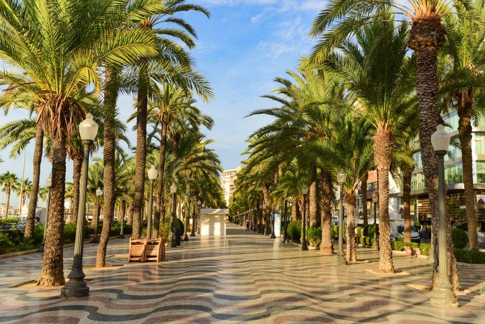 Paseo de la Explanada de España con palmeras y suelo en forma de olas en Alicante