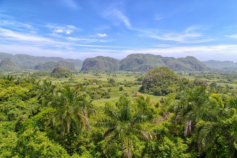 Selva con montañas al fondo en el Valle de Viñanes en Cuba