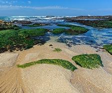 Costa Verde-Oporto